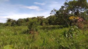 Terreno En Ventaen San Pedro, Vazquez De Coronado, Costa Rica, CR RAH: 19-1393