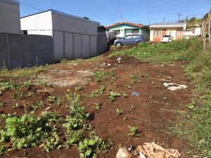 Terreno En Ventaen Cot, Oreamuno, Costa Rica, CR RAH: 19-1455