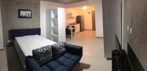 Apartamento En Alquileren Curridabat, Curridabat, Costa Rica, CR RAH: 19-1456