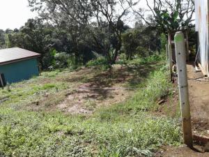 Terreno En Ventaen Alajuela, Grecia, Costa Rica, CR RAH: 19-1653