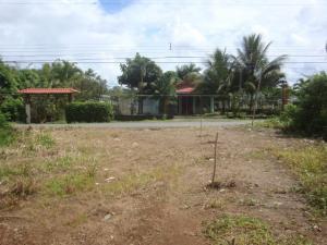 Terreno En Ventaen Jimenez, Pococi, Costa Rica, CR RAH: 19-1667