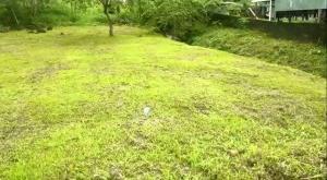 Terreno En Ventaen Guapiles, Limon, Costa Rica, CR RAH: 19-1694