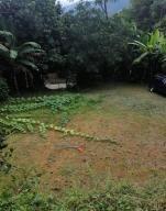 Terreno En Ventaen San Jose, Acosta, Costa Rica, CR RAH: 20-8