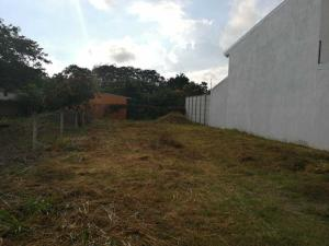 Terreno En Ventaen Alajuela, Alajuela, Costa Rica, CR RAH: 20-70