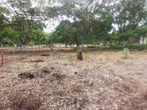 Terreno En Ventaen Tarcoles, Garabito, Costa Rica, CR RAH: 20-97
