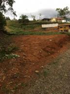 Terreno En Ventaen San Jose, Perez Zeledon, Costa Rica, CR RAH: 20-151