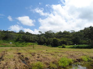 Terreno En Ventaen Jaco, Puntarenas, Costa Rica, CR RAH: 20-244