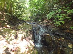 Terreno En Ventaen Puriscal, Puriscal, Costa Rica, CR RAH: 20-256