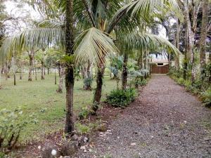 Casa En Ventaen Aguas Zarcas, San Carlos, Costa Rica, CR RAH: 20-325