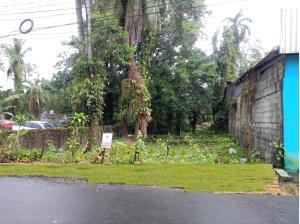 Terreno En Alquileren Guapiles, Guacimo, Costa Rica, CR RAH: 19-409