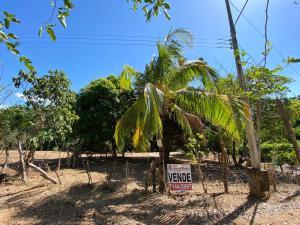Terreno En Alquileren El Coyol, Orotina, Costa Rica, CR RAH: 20-501