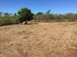 Terreno En Ventaen Orotina, Orotina, Costa Rica, CR RAH: 20-616