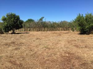 Terreno En Ventaen Orotina, Orotina, Costa Rica, CR RAH: 20-617