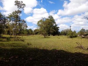 Terreno En Ventaen Guapiles, Pococi, Costa Rica, CR RAH: 20-657