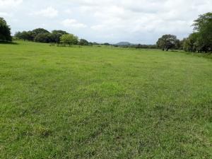 Terreno En Ventaen Liberia, Carrillo, Costa Rica, CR RAH: 20-827