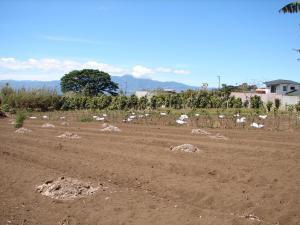 Terreno En Ventaen Concepcion, San Rafael, Costa Rica, CR RAH: 20-849
