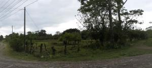 Terreno En Ventaen Sarapiqui, Sarapiqui, Costa Rica, CR RAH: 20-899