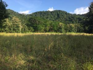 Terreno En Ventaen Santa Rita, Nandayure, Costa Rica, CR RAH: 20-910