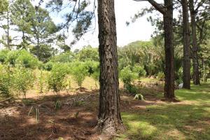 Terreno En Ventaen Escazu, Escazu, Costa Rica, CR RAH: 20-1028