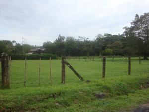 Terreno En Ventaen Guapiles, Pococi, Costa Rica, CR RAH: 20-1045