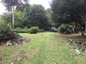 Terreno En Ventaen Guapiles, Pococi, Costa Rica, CR RAH: 20-1046