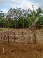 Terreno En Ventaen Alajuela, San Mateo, Costa Rica, CR RAH: 20-1161
