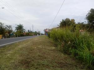 Terreno En Ventaen Guapiles, Pococi, Costa Rica, CR RAH: 20-1181