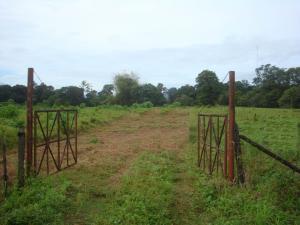 Terreno En Ventaen Sarapiqui, Sarapiqui, Costa Rica, CR RAH: 20-1184