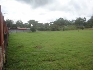 Terreno En Ventaen Guapiles, Pococi, Costa Rica, CR RAH: 20-1191