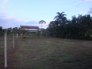 Terreno En Ventaen Guapiles, Pococi, Costa Rica, CR RAH: 20-1212