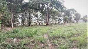 Terreno En Ventaen Santa Rosa, Santo Domingo, Costa Rica, CR RAH: 20-1256