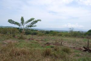 Terreno En Ventaen San Miguel, Barranca, Costa Rica, CR RAH: 20-1317