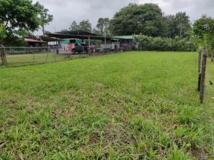 Terreno En Ventaen Guapiles, Pococi, Costa Rica, CR RAH: 20-1427