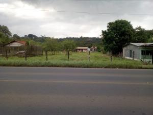 Terreno En Ventaen Puerto Viejo, Sarapiqui, Costa Rica, CR RAH: 20-1428