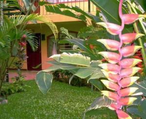 Apartamento En Alquileren San Pedro, Montes De Oca, Costa Rica, CR RAH: 20-1470