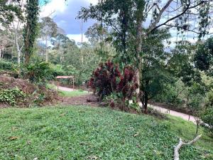 Terreno En Ventaen Turrialba, Turrialba, Costa Rica, CR RAH: 20-1488