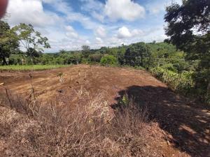 Terreno En Ventaen Alajuela, Alajuela, Costa Rica, CR RAH: 20-1599