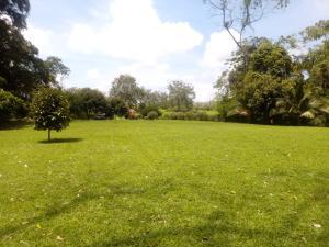 Terreno En Ventaen La Fortuna, San Carlos, Costa Rica, CR RAH: 20-1633