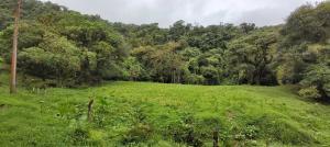 Terreno En Ventaen San Jose, Vazquez De Coronado, Costa Rica, CR RAH: 20-918