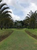 Terreno En Ventaen Guapiles, Guacimo, Costa Rica, CR RAH: 20-1689