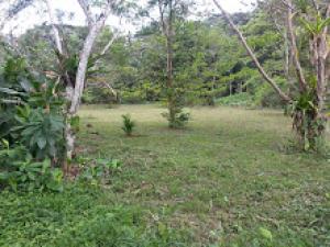 Terreno En Ventaen Tarcoles, Garabito, Costa Rica, CR RAH: 20-1705