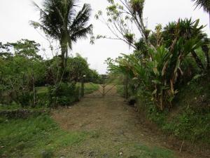 Terreno En Ventaen Santa Marta, Siquirres, Costa Rica, CR RAH: 20-1740