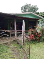 Casa En Ventaen Sarapiqui, Sarapiqui, Costa Rica, CR RAH: 20-1753