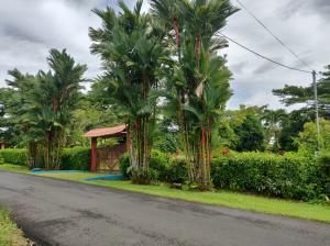 Terreno En Ventaen Rio Frio, Sarapiqui, Costa Rica, CR RAH: 20-1801