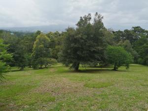 Terreno En Ventaen San Rafael De Heredia, San Rafael, Costa Rica, CR RAH: 20-1839