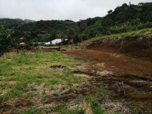 Terreno En Ventaen San Ramon, San Ramon, Costa Rica, CR RAH: 20-1907