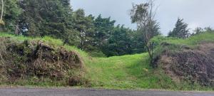 Terreno En Ventaen Concepcion, San Rafael, Costa Rica, CR RAH: 20-1969