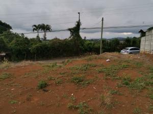 Terreno En Ventaen Tambor, Alajuela, Costa Rica, CR RAH: 20-2023