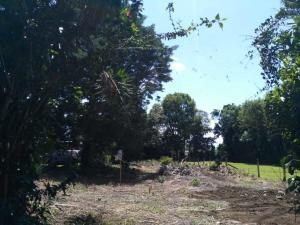 Terreno En Ventaen Desamparados, Alajuela, Costa Rica, CR RAH: 20-2049