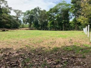Terreno En Ventaen San Miguel, Sarapiqui, Costa Rica, CR RAH: 20-2079